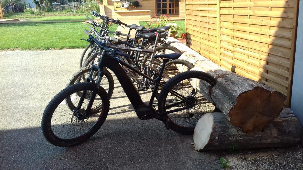 Vélos avec tronc