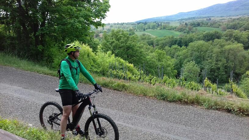 Vélo thomas vu chemin des vignes