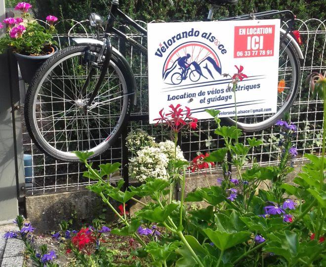 pancarte vélo